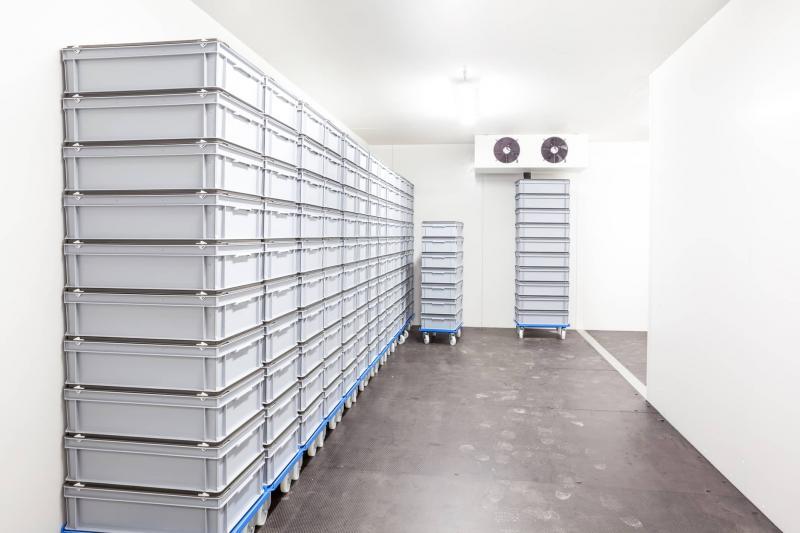 Mcallen Warehouse & Cold Storage