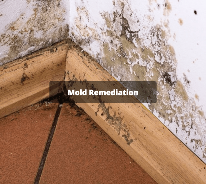 Columbia Mold Remediation