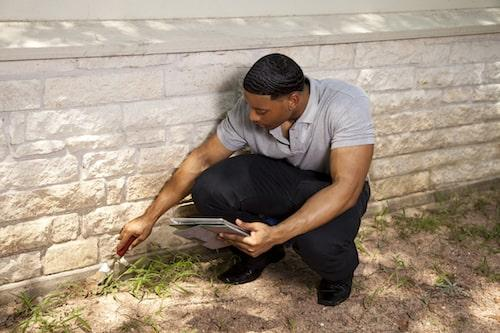 Sugar Land Outdoor Pest Exterminator