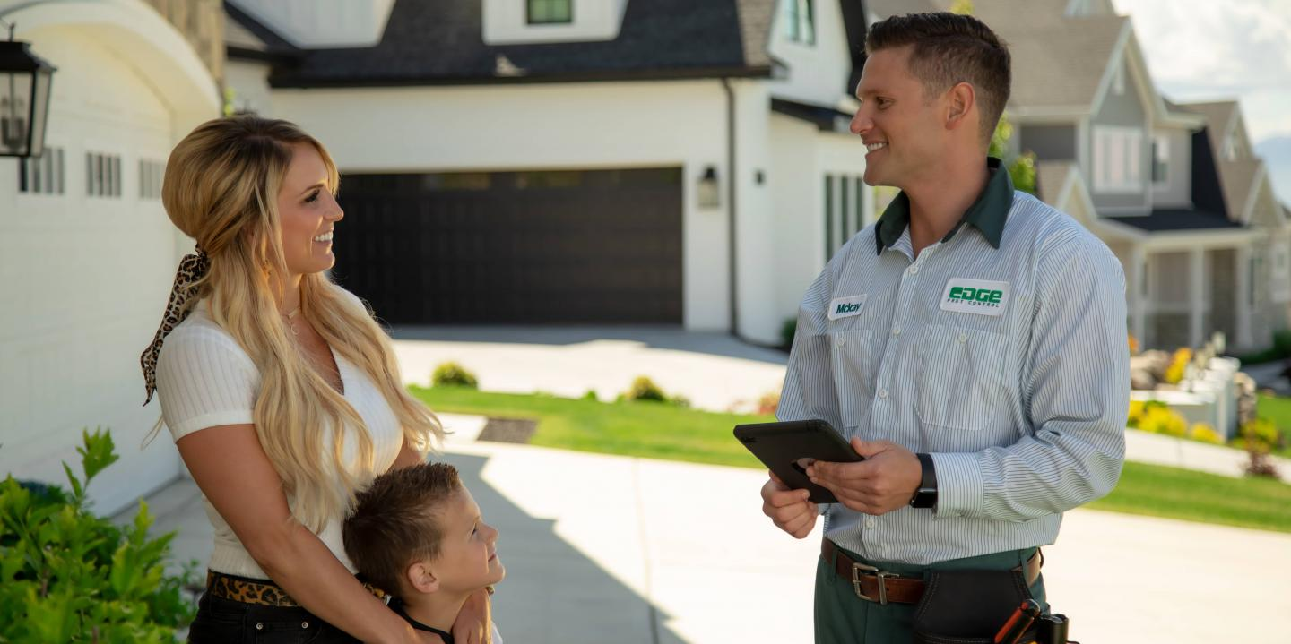 Exterior Home Pest Inspection in Colorado Springs